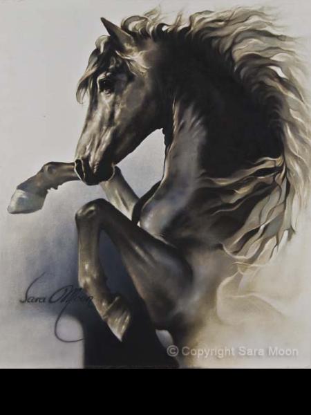 Black Fury by Sara Moon