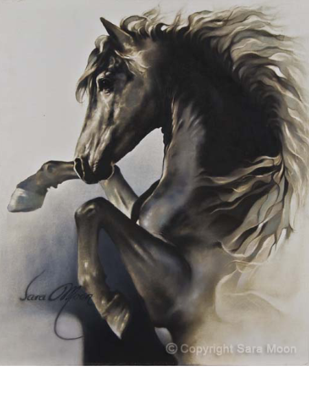 Black Fury by Sara MoonBeauty In The Rain by Sara Moon