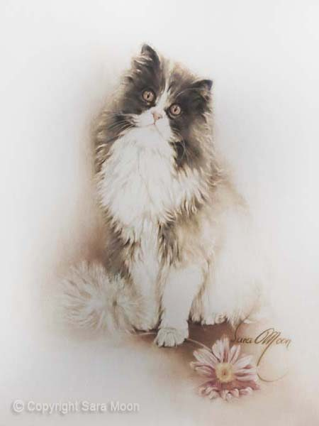 Cat with Flower by Sara Moon