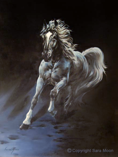 White Stallion by Sara Moon
