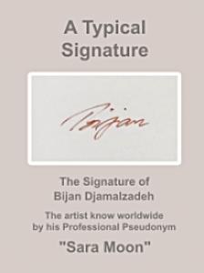 Typical Bijan Signature