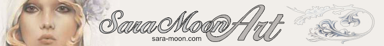 Sara Moon Art Banner