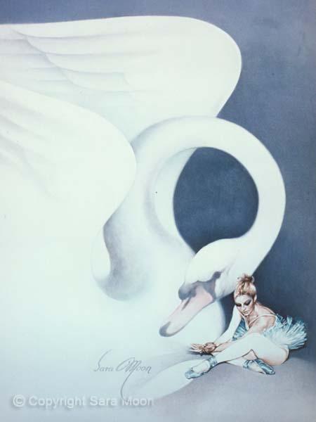 'Swan Song' by Sara Moon